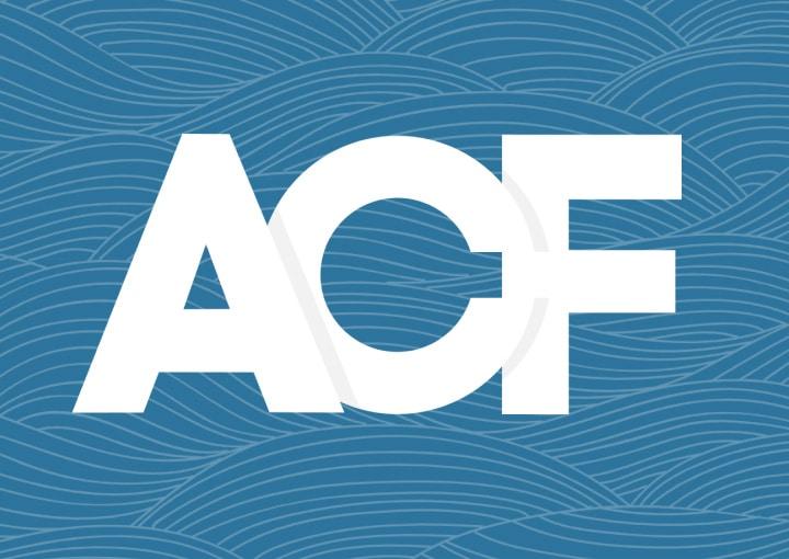 Campos personalizados en WordPress con ACF y sus posibilidades por JuanKa Díaz